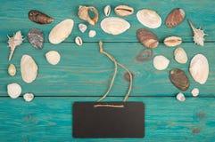 O grupo de shell e de quadro indicador do mar no fundo de madeira azul foto de stock