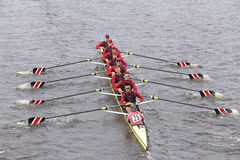 O grupo de Stanford Men compete na cabeça do Eights mestre de Charles Regatta Men Fotografia de Stock Royalty Free