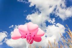 O grupo de teste padrão cor-de-rosa bonito do coração balloons na luz clara - azul Imagem de Stock Royalty Free