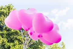 O grupo de teste padrão cor-de-rosa bonito do coração balloons no céu com fundo do arbusto da árvore Foto de Stock Royalty Free