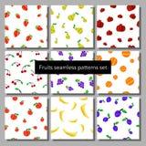 O grupo de testes padrões sem emenda dos frutos diferentes coloridos vector a ilustração Imagem de Stock