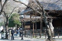 O grupo de tevê relata do santuário de Yasukuni quanto as flores de sakura floresceram para fora Fotos de Stock