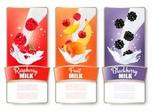O grupo de três etiquetas do fruto e de bagas no leite espirra Imagem de Stock