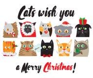 O grupo de vetor ilustrou retratos dos gatos do Natal dos desenhos animados Caráteres animais bonitos Cartão do ano novo Fotografia de Stock