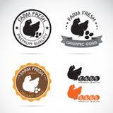 O grupo de vetor uma galinha e ovos etiqueta Imagem de Stock Royalty Free