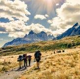 O grupo de viajantes com trouxas anda ao longo de uma fuga para um cume da montanha no dia ensolarado Mochileiros e estilo dos ca imagens de stock royalty free