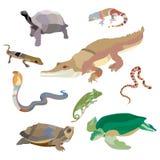 O grupo decorativo dos répteis e dos anfíbios de escorpião do caracol da tartaruga do crocodilo da cobra crab os ícones no estilo ilustração royalty free