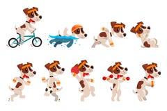 O grupo desportivo bonito do terrier de russell do jaque, caráter engraçado do cão de estimação que faz vários tipos dos esportes ilustração stock