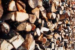 O grupo do fogo spruce de madeira apronta-se para a chaminé Fotos de Stock
