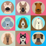 O grupo do vetor de cão diferente produz ícones do app no estilo liso Foto de Stock