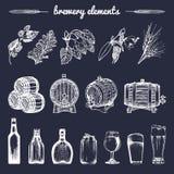 O grupo do vetor de mão da cervejaria do vintage esboçou elementos, tambor, garrafa, vidro, ervas e plantas Coleção retro dos íco Imagens de Stock