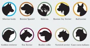 O grupo do vetor de silhuetas dos retratos do cão produz Foto de Stock Royalty Free