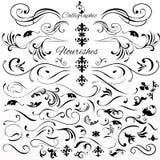 O grupo do vetor de vintage denominou elementos ou flourishes caligráficos ilustração royalty free