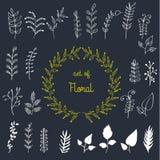 O grupo grande de coleção das flores e das ervas folheia Foto de Stock