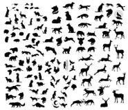 O grupo grande de silhuetas dos animais do vetor da floresta ilustração stock