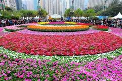 Mostra de flor internacional 2013 de Hong Kong Fotografia de Stock