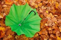 O guarda-chuva aberto verde encontra-se de encontro às folhas de outono foto de stock royalty free