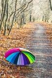 O guarda-chuva colorido encontra-se na folha do outono imagens de stock