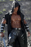 O guerreiro Foto de Stock Royalty Free