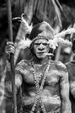 O guerreiro de Asmat do retrato com uma pintura e uma coloração tradicionais em uma cara Imagens de Stock Royalty Free