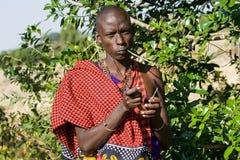 O guerreiro de Maasai mostra como usar uma planta para escovar os dentes imagem de stock