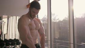 O halterofilismo profissional, homem dos esportes mantém os músculos na tensão e nos olhares no resultado do treinamento da força vídeos de arquivo