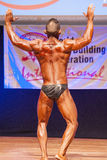 O halterofilista masculino dobra seus músculos para mostrar seu físico Fotos de Stock Royalty Free