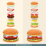 O hamburguer ajustou 6 Foto de Stock Royalty Free