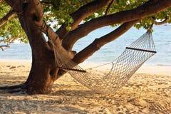 O hammock imagens de stock