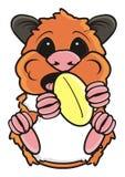 O hamster mantém amendoins ilustração do vetor