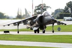 O Harrier salta o jato fotos de stock royalty free