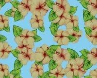 O hibiscus do verão floresce o vetor sem emenda do teste padrão da ilustração Foto de Stock