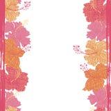 O hibiscus floresce a beira sem emenda Fotografia de Stock
