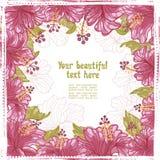 O hibiscus floresce o quadro da elegância Fotografia de Stock Royalty Free