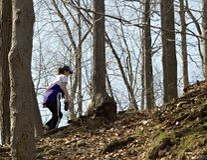 O Hike Fotografia de Stock