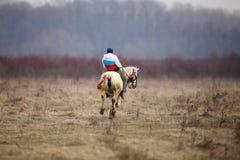 O homem é em pelo montando um cavalo decorado antes de uma corrida de cavalos da celebração do esmagamento fotos de stock royalty free
