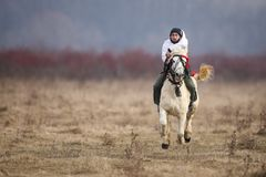 O homem é em pelo montando um cavalo decorado antes de uma corrida de cavalos da celebração do esmagamento fotografia de stock