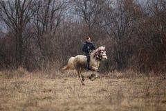O homem é em pelo montando um cavalo decorado antes de uma corrida de cavalos da celebração do esmagamento imagem de stock