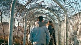 O homem adulto novo está andando no parque Tunel com hera velha Homem na sarja de Nimes em Sunny Day filme