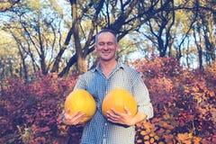 O homem alegre está com as duas abóboras enormes Fotografia de Stock Royalty Free