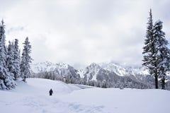O homem anda afastado na região selvagem nevado montanhosa foto de stock royalty free