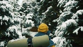 O homem anda através da floresta fria do inverno coberta com a neve vídeos de arquivo