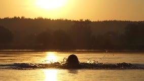 O homem animador nada a borboleta em um lago no por do sol no slo-mo filme