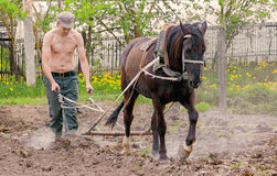 O homem ara o jardim Foto de Stock