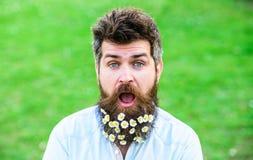 O homem com barba e o bigode apreciam a mola, fundo verde do prado Conceito da primavera Moderno na cara surpreendida chocada Fotos de Stock Royalty Free
