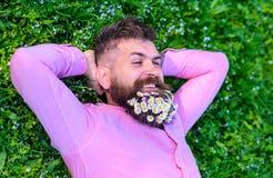 O homem com a barba na cara de sorriso aprecia a natureza Una com o conceito da natureza O homem farpado com flores da margarida  foto de stock royalty free