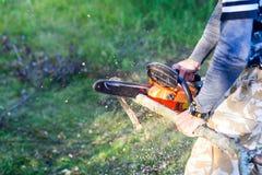 O homem com gasolina pôs a madeira do fogo do corte da serra de cadeia da árvore mim Fotografia de Stock Royalty Free