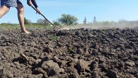 O homem com pés desencapados cultiva a terra com um ancinho vídeos de arquivo