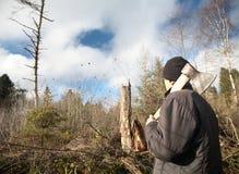 O homem com um machado olha caído abaixo da madeira Fotografia de Stock