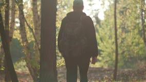 O homem com uma trouxa anda através da floresta video estoque